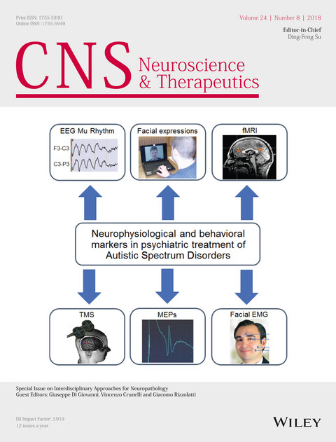 Special Issue on Interdisciplinary Approaches for Neuropathology